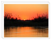 Botswana Photos